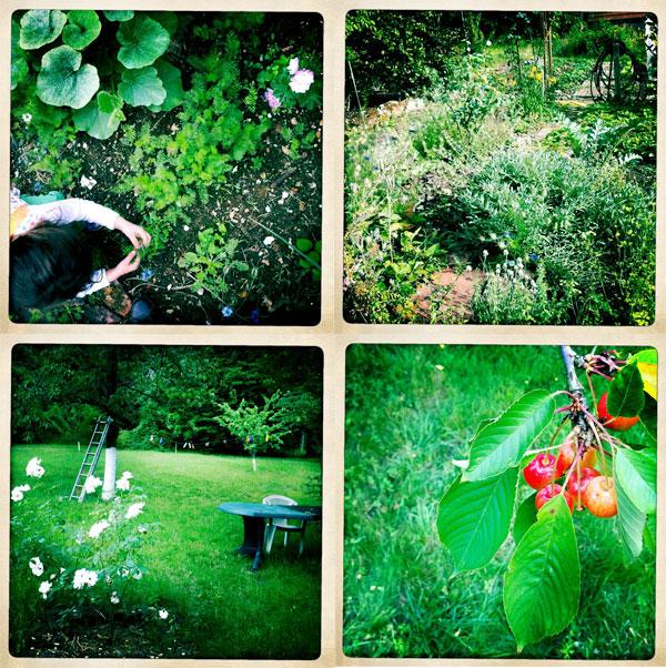 jardin-juin2